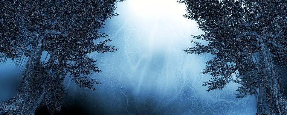 Versammlung im Ostwald – aus dem Leben der Autorin (oder: Was machen die Protagonisten, wenn sie sich unbeobachtet fühlen?)