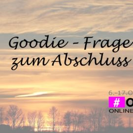 Onlinebuchmesse letzter Tag